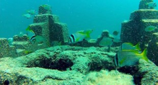 3D Printing Artificial Reefs in the Persian Gulf to Save Deteriorating Marine Ecosystems
